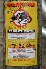 Rats Warning Sign